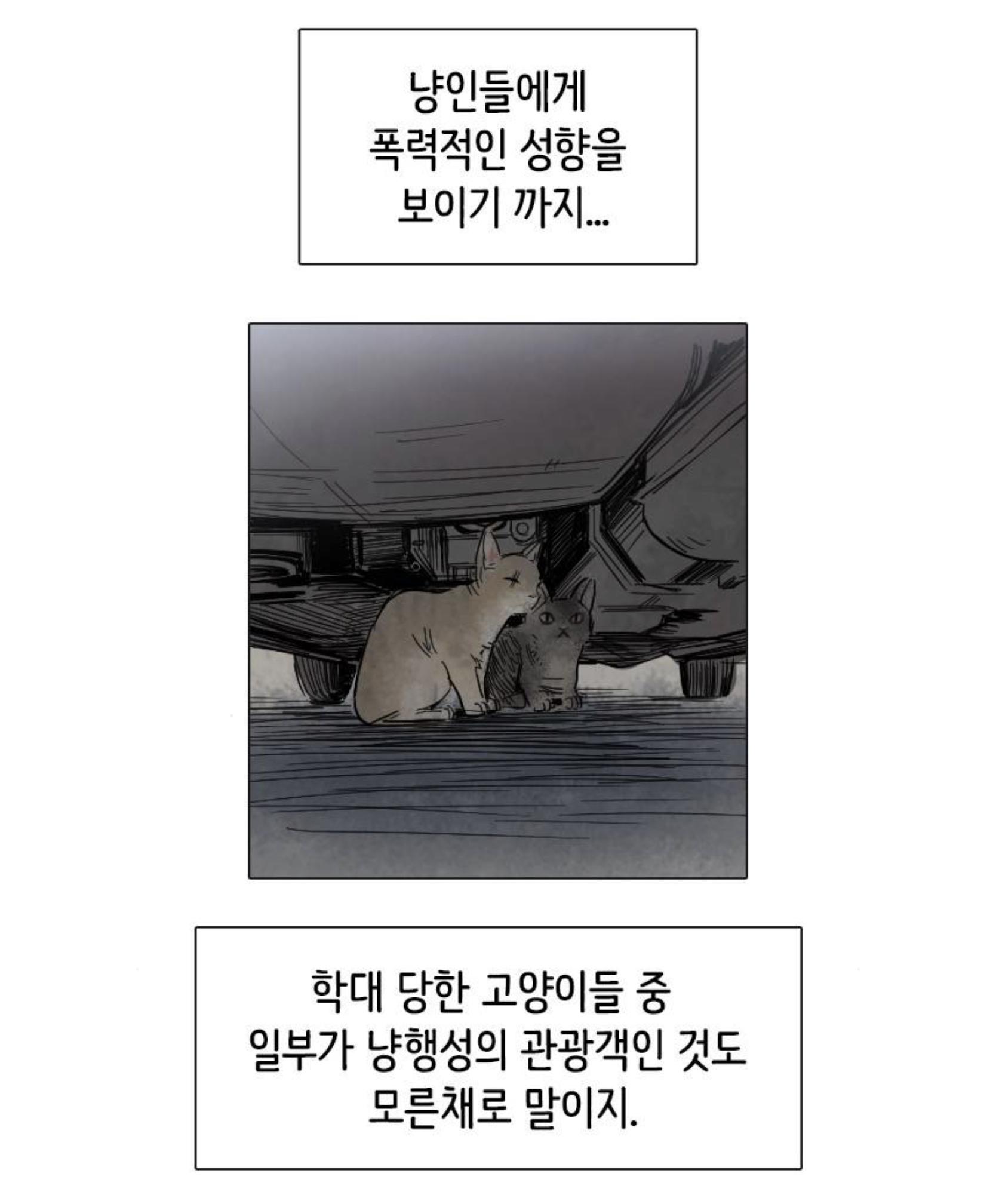 AED4299F-908F-4083-9150-34D98C3E50B0.jpeg